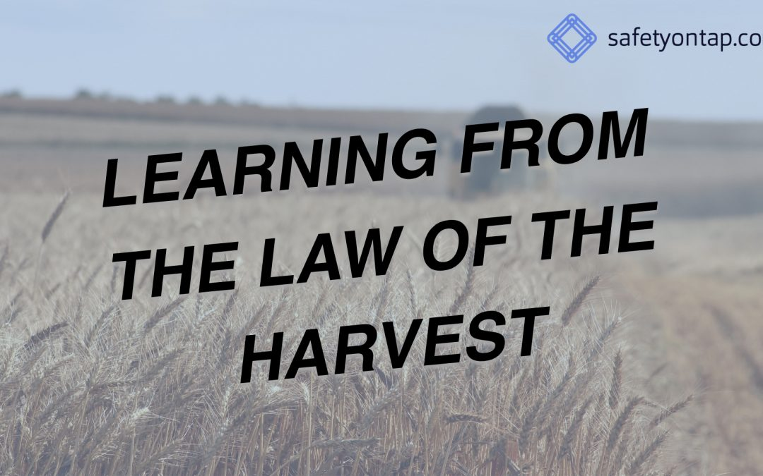 Ep063: Learning from the Law of the Harvest